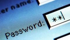 password1kn8.jpg