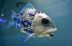 fish-robot.jpg